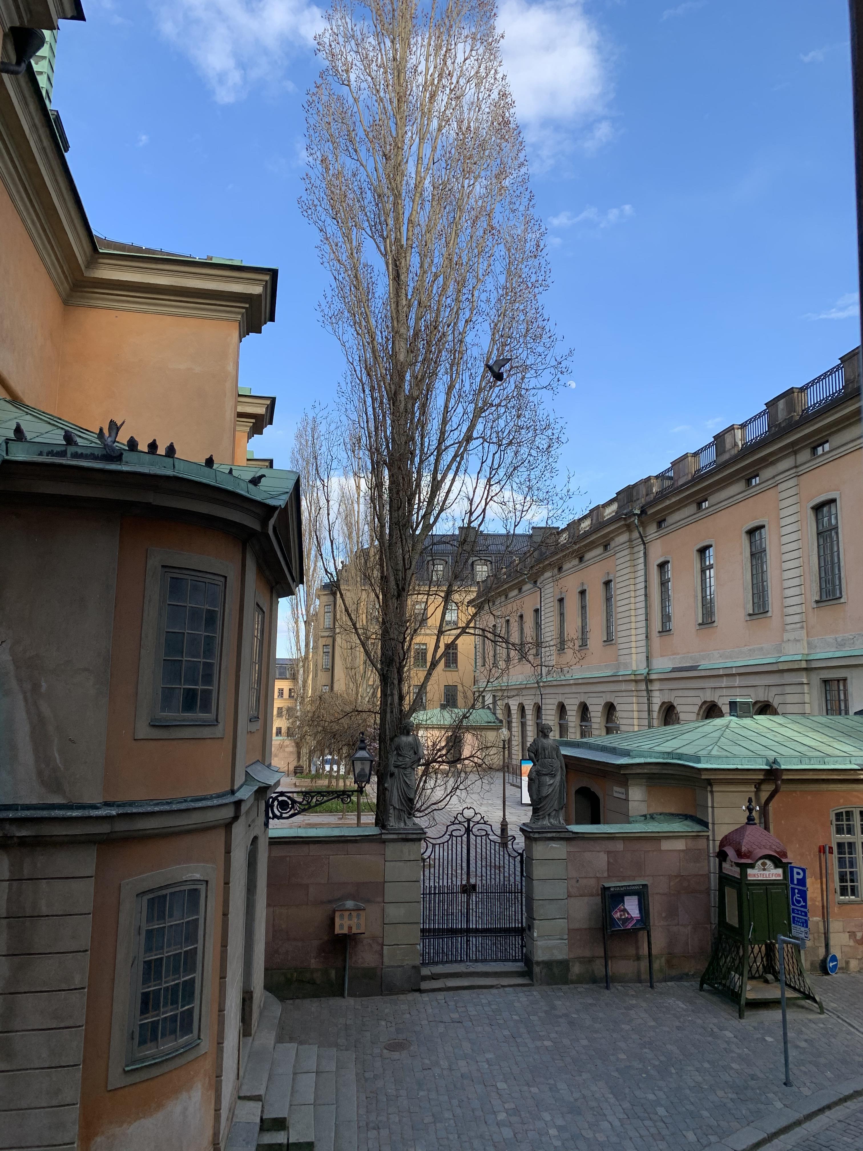 Yngre Kvinnor Aldre Man Knulla I Stockholm Bjrkekrr